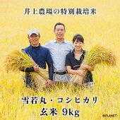 庄内米井上農場の特別栽培米【雪若丸】【コシヒカリ】玄米9kg