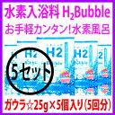 H2bb-05-hin