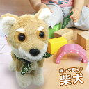 音声認識AIロボット 柴犬[電子 ぬいぐるみ ロボット 犬