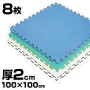 《8枚》リバーシブルジョイントマット2.0 ボディメーカー 100×100×2cm[体育・柔道・空手...