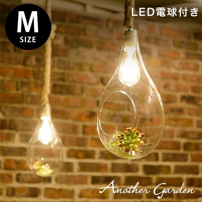 天井照明, ペンダントライト・吊下げ灯 SWAN M BOTANIC HANGING LIGHT M APE-021WH LED