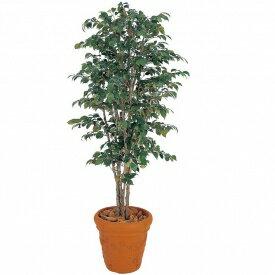 【人工植栽】 タカショー グリーンデコ鉢付  ベンジャミンナチュラル 1.5m GD-31S:エクステリアのプロショップ キロ