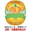 ナギサビール みかんエール 330ml 30本セット【フルー...