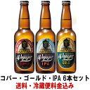 お中元 ビール ギフト ボイジャー コパー ゴールド IPA...