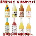 梅乃宿 リキュール 720ml 12本 選べる 飲み比べセットあらごし梅酒 ゆず酒 あらごしもも あ...