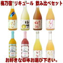 梅乃宿 リキュール 720ml 6本 選べる 飲み比べセットあらごし梅酒 ゆず酒 あらごしもも あらごしみかん あらごしりんご あらごしれもん マンゴー ブラッドオレンジから6本お選びください。送料無料 送料込み 梅酒 梅の宿 フルータス 奈良県 福袋 飲み比べ・・・