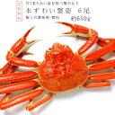 ズワイガニ650g前後×6尾【ずわい蟹姿 合計約4kg前後】...