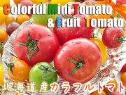 カラフルミニトマト フルーツ