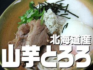 山芋とろろ 50g×10袋【北海道産】とろろいも【ご飯やお蕎麦にピッタリ!】北海道のやまいも使用 美味しいトロロ たっぷり使える10袋セット