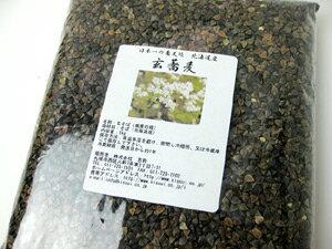 玄蕎麦(そばの種)1kg【北海道産】※平成27年度産 新そば