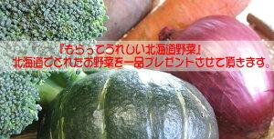 野菜お楽しみセット(じゃがいもインカのめざめ、シャドークイーン、ノーザンルビー、メークイン、玉ねぎ)+お試し野菜おまけ付北海道産地直送!送料無料北海道
