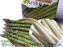 アスパラガス2種(グリーンアスパラ500g、ホワイトアスパラ500g)超極太【3L以上、1Kg】送料無料!北海道産