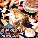 【クーポンで7,998円→3,999円】 4種17品 海鮮バ