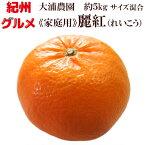 麗紅 れいこう 5kg 家庭用 サイズ混合 送料無料 大浦農園 2月中旬〜3月上旬にかけて発送
