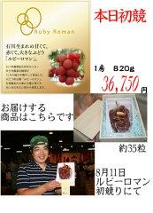 [石川県産] 国内最大級の粒 甘くてジューシー ルビーロマン 秀品 送料込  9月10日まで