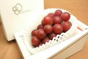 石川県が世界に誇る、大きく甘いルビーの輝きを持つぶどう石川県産ぶどう ルビーロマン 送料...