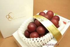 石川県が世界に誇る、大きく甘いルビーの輝きを持つぶどう石川県産ぶどう ルビーロマン 最高...