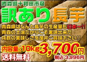 青森県は長芋の生産量も日本一!豊かな土壌で育った長芋は味も日本一!【楽天最安値挑戦&送料...