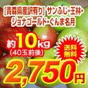 【送料無料】30年度青森県産葉取らずりんご 訳あり10kgサ...
