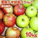 【期間限定ポイント5倍】りんご 訳あり 10kg 送料無料