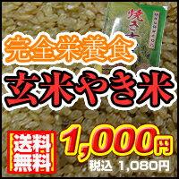 【送料無料】★北国お米ショップ独占販売!完全栄養食!やき玄米(1kg)