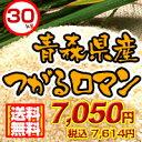 ■青森県産つがるロマン30kg■送料無料■※玄米30Kgか精米した白米27kgからお選び下さい26年度...