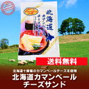 メール便 送料無料 北海道 カマンベールチーズ サンド チーズ鱈 60g×1袋 価格 500 円 珍味 チーズたら 送料無料 北海道十勝産のチーズ使用