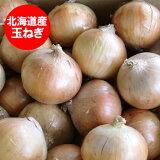 北海道 玉ねぎ 5kg 送料無料 北海道産 玉ねぎ 5kg(Lサイズ) 価格 1780円 富良野産もしくは北見F1