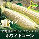 【北海道産】【ピュアホワイト】北海道産の白い とうもろこし「...