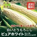 【北海道産】【ピュアホワイト・ホワイトショコラ】 全国離島も...