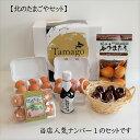北のたまごやセット送料無料卵たまごセットギフト北海道 煮卵半熟味玉燻製たまご温泉たまご卵かけご飯しょうゆ