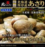 北海道 厚岸産 あさり 中サイズ 2kg 産地直送 アサリ 貝 国産 カイ かい ギフト 酒蒸し 味噌汁 だし クラムチャウダー