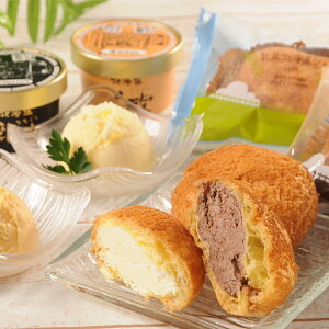 【送料無料】北海道産生乳のアイスとサックリ生地のシュークリーム。乳蔵アイス&シューセット