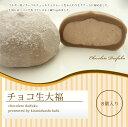 【ネット限定販売!!】チョコ生大福 8個入り 10P27May16