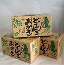 道産子米菓【訳あり・送料無料】どさんこおかきセット 昆布塩1箱+帆立バター味1箱