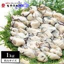 【訳ありSALE・指定日不可】広島産 特大かき 1kg 送料無料加熱用 牡蠣 カキ お取...