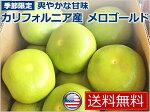 【送料無料】【新商品】カリフォルニア産メロゴールド18kg(23個〜27個入り)melogoldCalifornia【fruits】