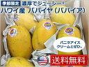【送料無料】ハワイ産 パパイヤ(パパイア)【fruits】
