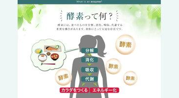 酵素おからMCTオイルベジエナチュラルカカオ酵素ダイエット