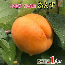 長野県産生食用あんずハーコット1キロ