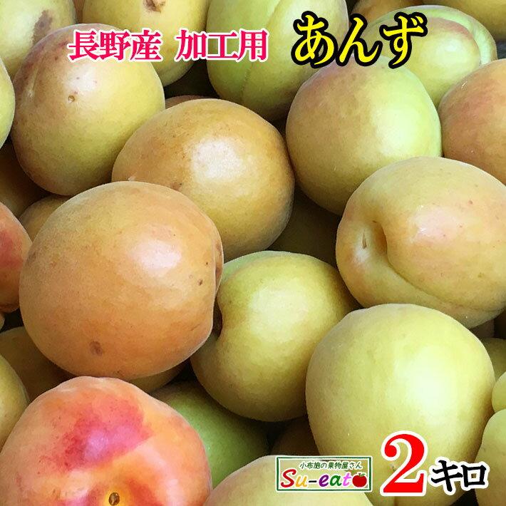フルーツ・果物, あんず 7 2 200