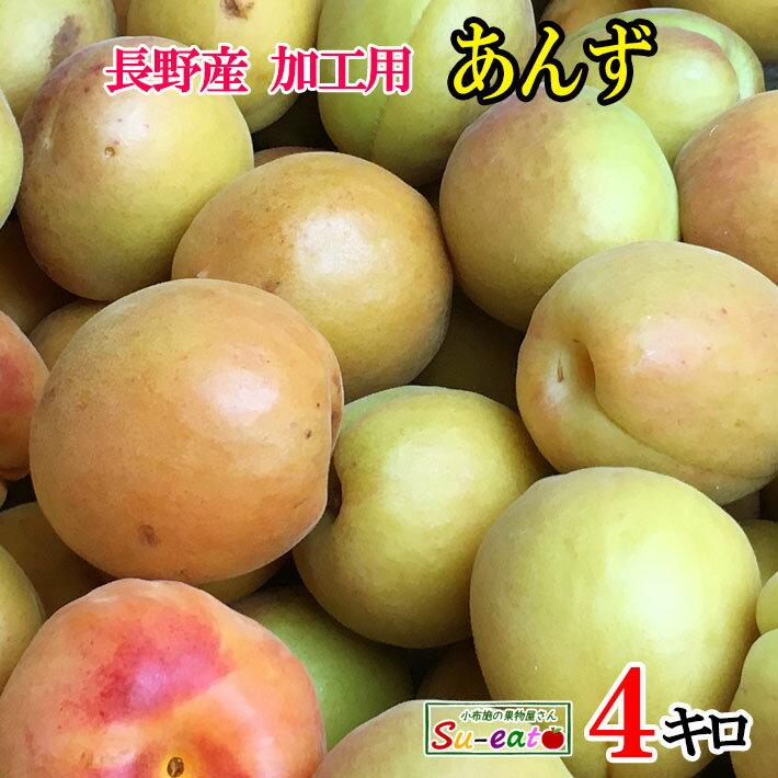フルーツ・果物, あんず 7 4