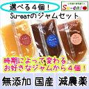 送料無料 選べる! スイートの ジャム 4個セット100g×4個 あんず 桃 ワッサー 減農薬 長野県産