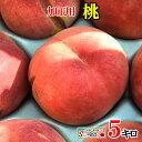 加工用 桃 減農薬 長野県産 品種おまかせ 5キロ