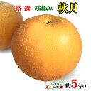 ご予約受付中 特選 味極み 梨 秋月 約5キロ 減農薬 完熟 長野県産