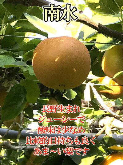 訳あり完熟味極み梨減農薬長野県産5キロ