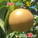ご予約受付中 訳あり 完熟 味極み 梨 減農薬 長野県産 約10キロ