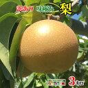 10月上旬 朝どれ 梨 南水  訳あり減農薬 長野県産 3キロ おまけ付き レビューを書いたら200円クーポン