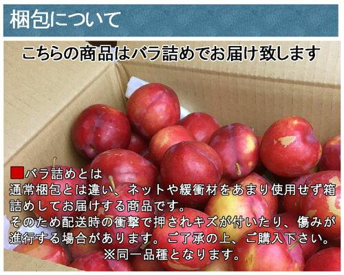 最安値朝獲れプラム太陽秋姫すもも減農薬長野県産産地直送鮮度抜群2キロ