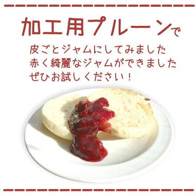 ご予約受付中加工用生プルーン減農薬長野県産3キロ生食には向きません